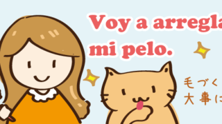 arreglar 直す 整える 整理する スペイン語