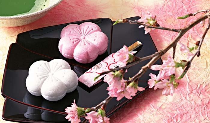 桜とお花見のスペイン語 cerezo