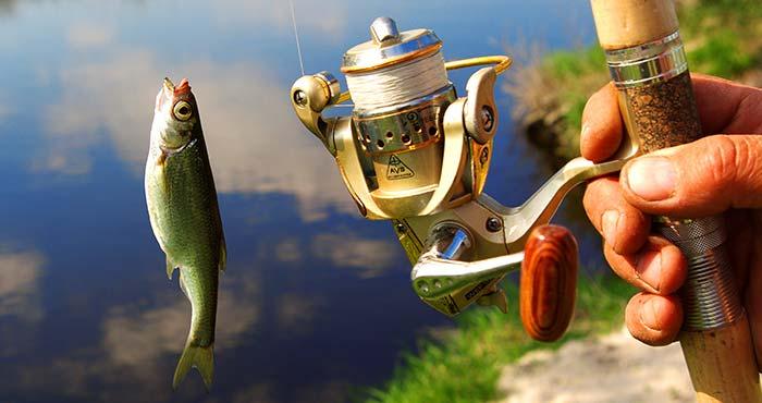 釣りをする スペイン語