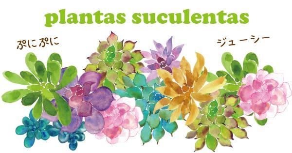 多肉植物 スペイン語 単語