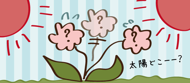 花や植物のなぞなぞ