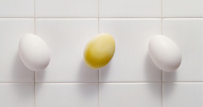 スペイン語で卵を産む