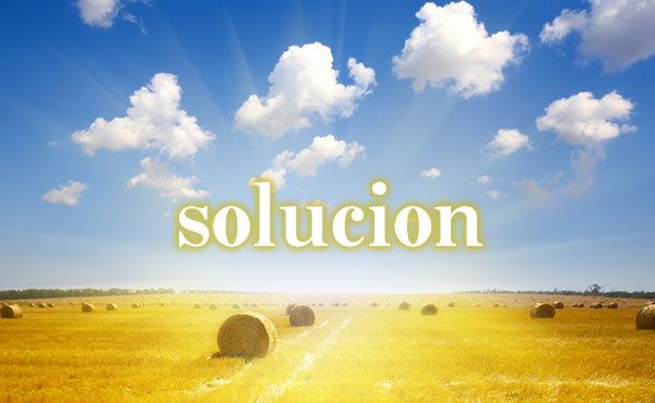 解決のスペイン語